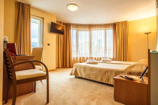 BEST WESTERN Hotel Europe: Standard room