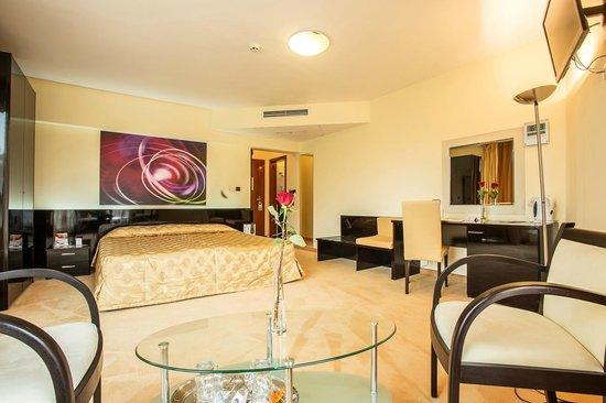 BEST WESTERN Hotel Europe: Deluxe room