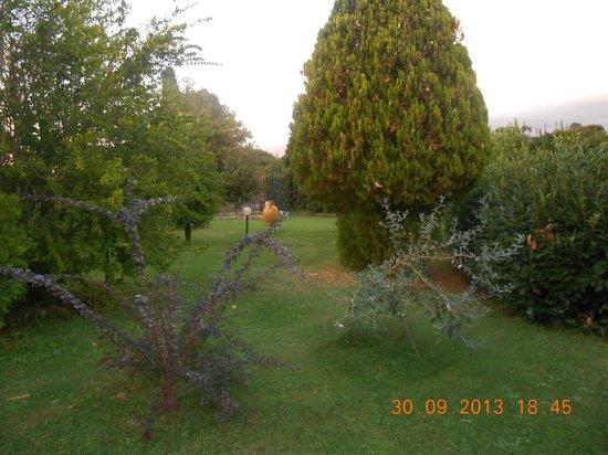 Agriturismo L.B. Stud di Riccioni G. : sempre lo splendido giardino