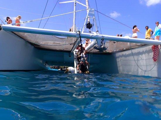 Mason's Travel: Easy snorkeling