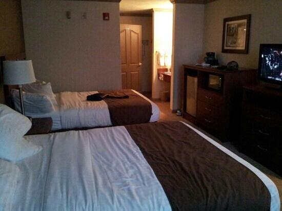 Sequoia Inn : the room