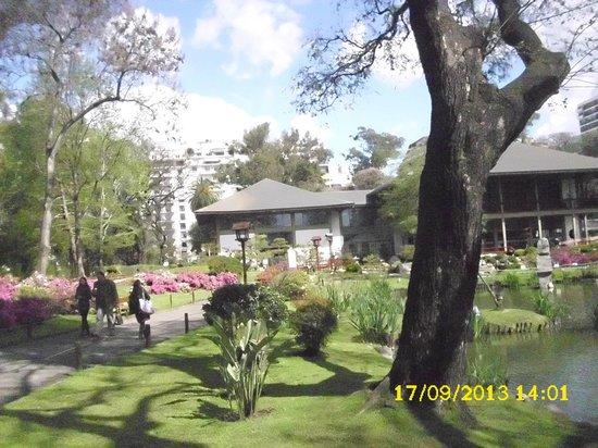 Japanese Garden: jardim 2