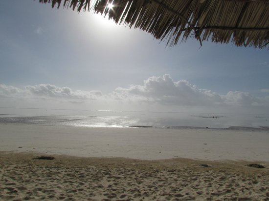 Ndame Beach Lodge Zanzibar: Prachtig strand