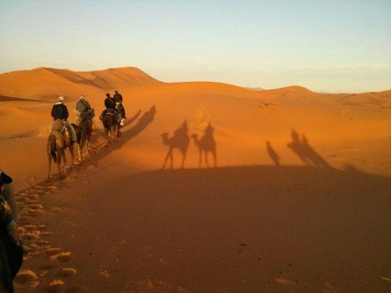 Hotel Nomad Palace : Dromedaristocht bij zonsopgang