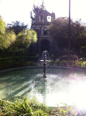 Hacienda La Cienega: Garden