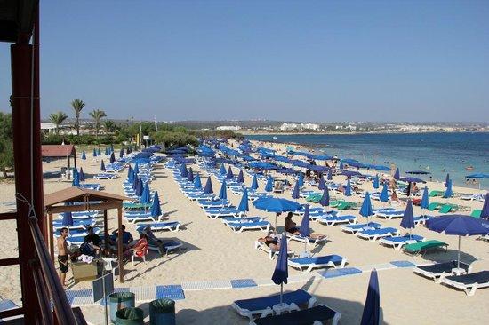 Asterias Beach Hotel: Der Beach