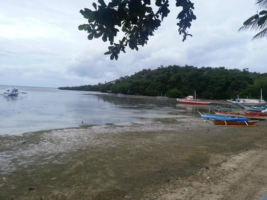 Paradise Bay Beach & Watersport Resort: Low tide