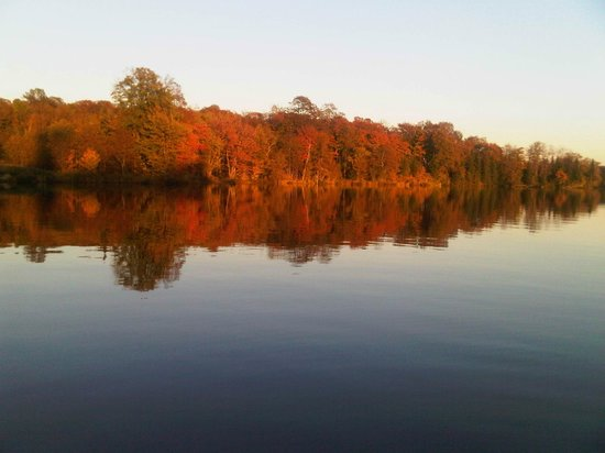 Four Winds Cottage Resort: fall leaves along the river