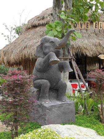 Hua Hin Safari: Elephant