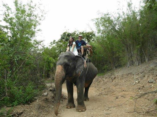 Hua Hin Safari: Elephant ride