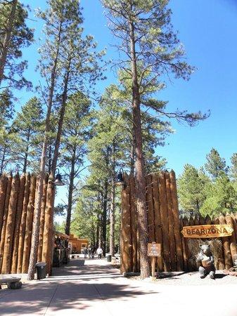 Bearizona Wildlife Park: Ingresso area pedonale