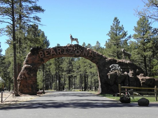 Bearizona Wildlife Park: Ingresso parco