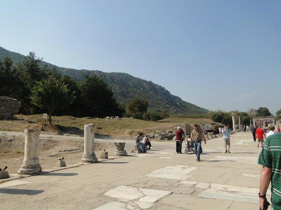 แองเชี่ยน โอลิมเปีย (อาร์ไชย่า โอลิมเปีย): campo de ruínas