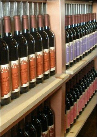 Amaro Winery