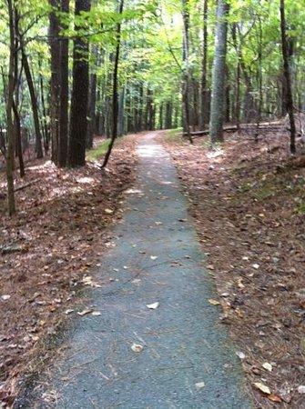 David Crockett State Park: the wonderful trails