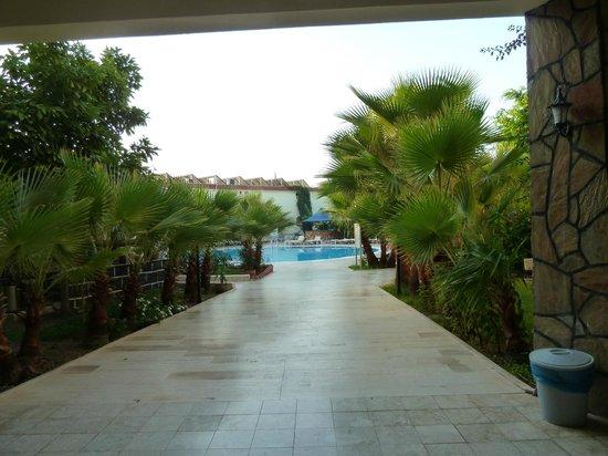 Sailor's Park Hotel : Pool