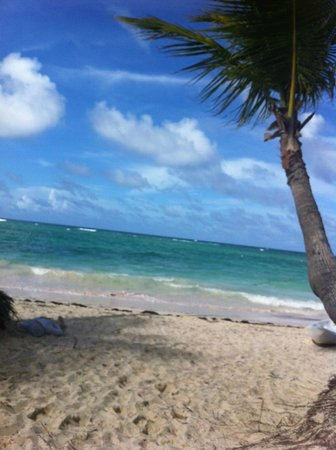 Another gorgeous day in the Dominican Republic at The Beach Club