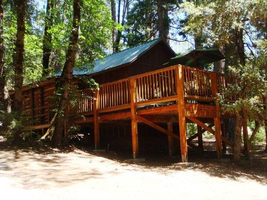 Yuba River Inn : Spruce Cabin