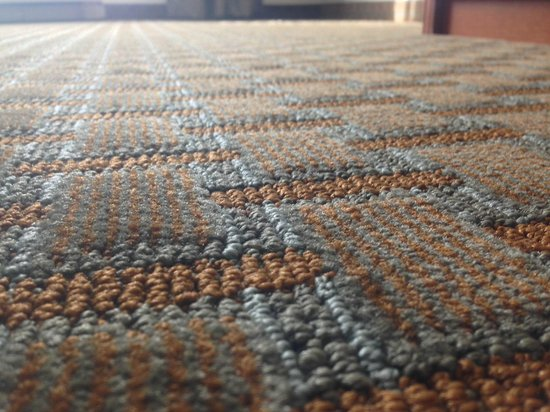 Holiday Inn Express Hotel & Suites Sioux Falls Southwest: carpet