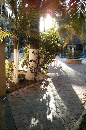 Hotel Plaza Caribe: green gardens everywhere