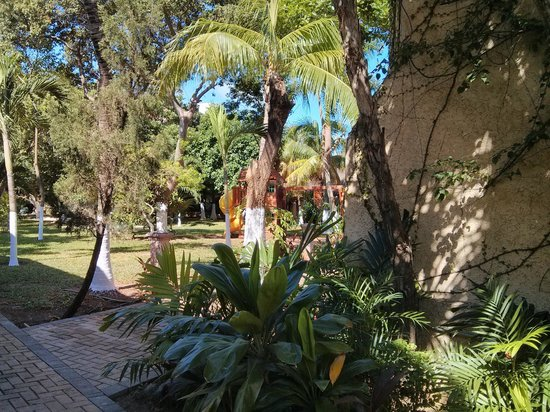 Hotel Plaza Caribe : secret garden