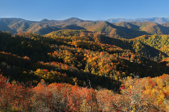 Bryson City, NC: Fall in the Smokies