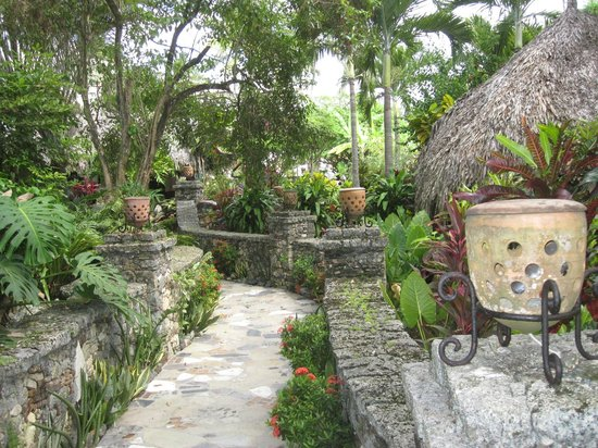 Hotel El Magnifico: Tropical pathways