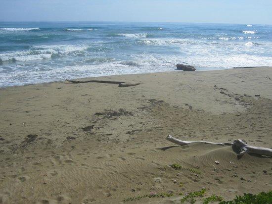 Hotel El Magnifico: Ocean view.