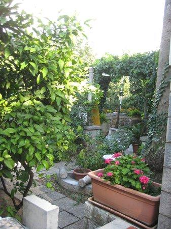Two Palms Villa: giardino
