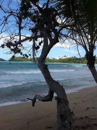 Casa Grande Beach Hotel : Playa Bonita in Las Terrenas in front of Casa Grande
