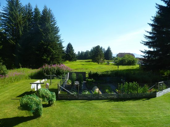 Homestead Bed & Breakfast: The view from our room across the veggie patch
