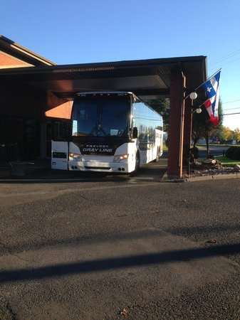 Best Western Hotel Brossard : Here is the Greyhound Bus as proof