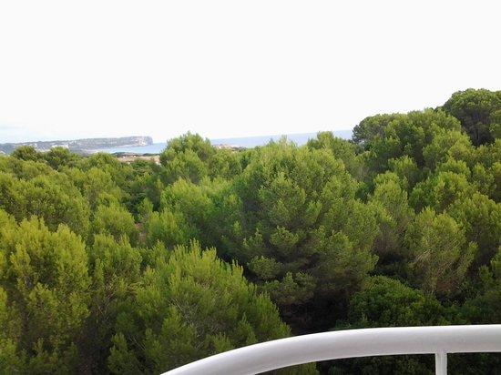 Hotel Stil Victoria Playa: Sea view