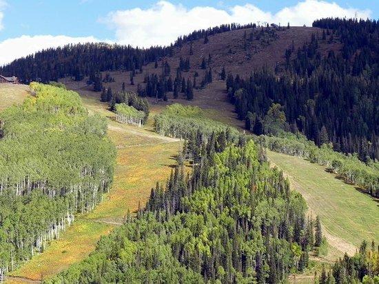 Steamboat Ski Resort: Upper Mountain
