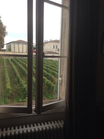 Le Pavillon Villemaurine: view from the window
