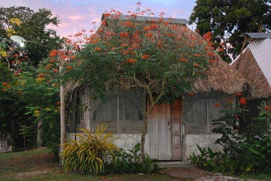 Cabanas Mercedes: Cabaña
