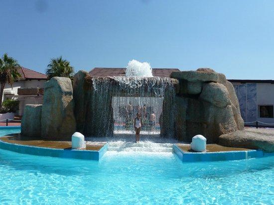 Aqua Tropic: AquaTropic