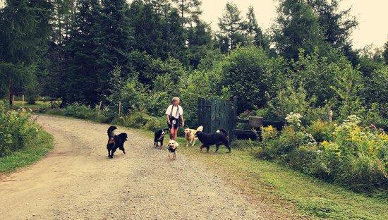 Domaine Summum: Meet our Staff of Bernese