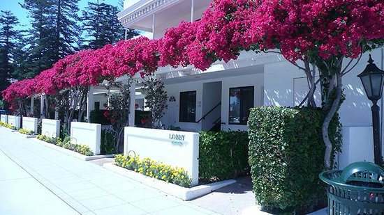 Glorietta Bay Inn: Look at surrounding hotel rooms