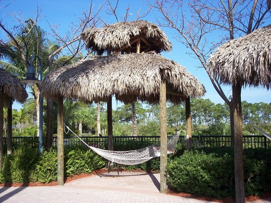 Hyatt Coconut Plantation: Reading spot near the lazy river