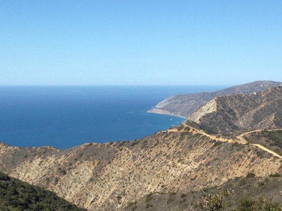 Catalina Expeditions  Tours: View from the crestiline