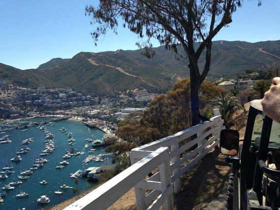 Catalina Expeditions  Tours: View of the Harbor