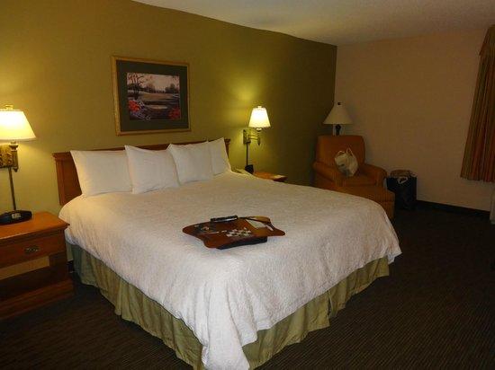 Hampton Inn Orlando International Drive/Convention Center: Cama king