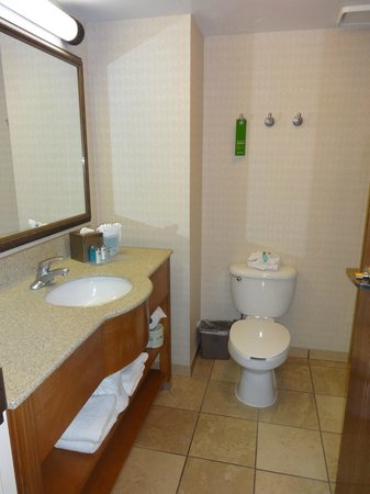 Hampton Inn Orlando International Drive/Convention Center: banheiro