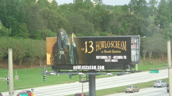 Holiday Inn & Suites Across from Universal Orlando : Vista