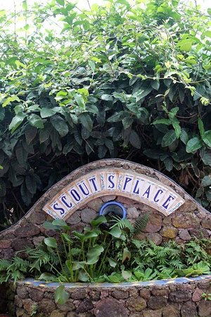 Scout's Place Restaurant & Bar: Welcome to Scout's Place