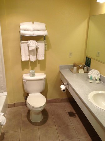 Comfort Suites Airport: Toilet/bathroom