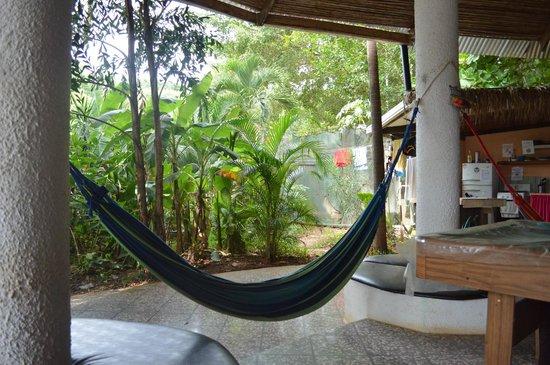 Pura Vida Hostel: Hammocks and hostel garden.