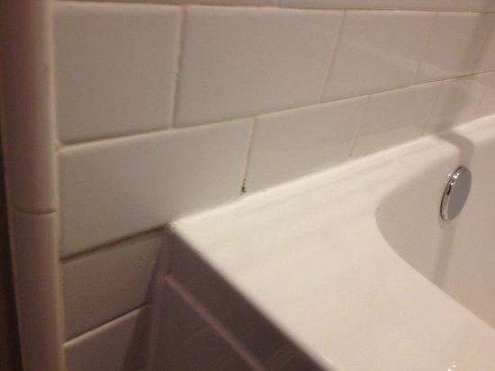 Shelter Hotels Los Angeles: Tub mold room 209