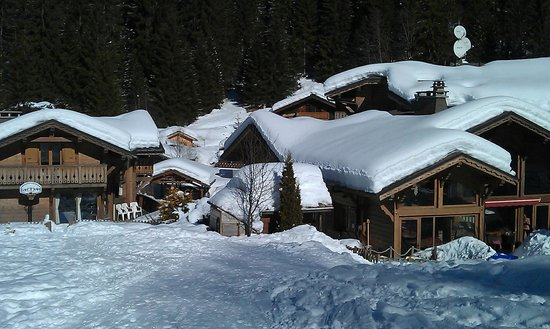 Chilly Powder: Main Chalet and Separate Chalet from back